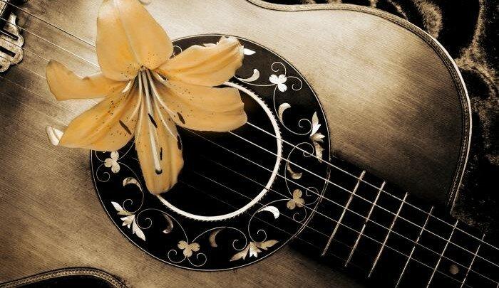 История-гитары