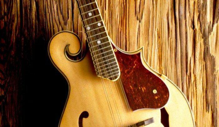 Как-научиться-играть-на-мандолине