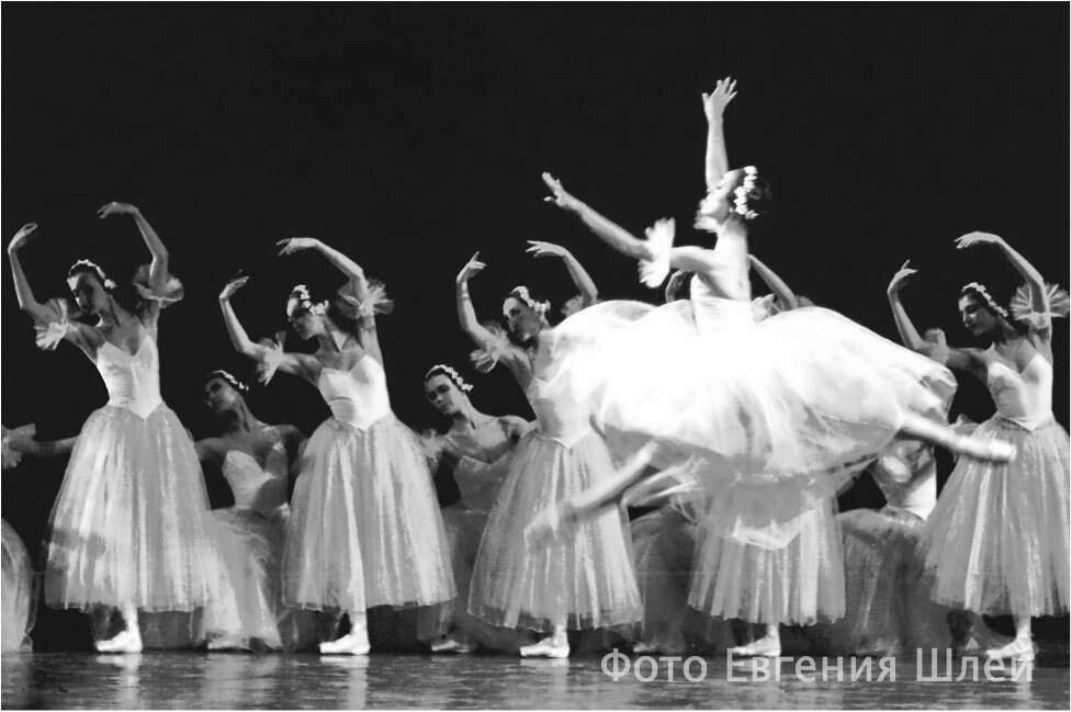 osnovanie_novosibirskogo_teatra_operi_i_baleta3